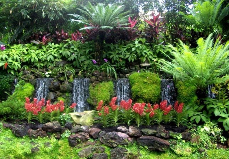 L 39 id e jardin du jour page 78 forum bassin for Jardin japonais 78