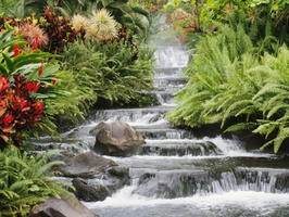 landscaping-small-garden-waterfall-with-moss-in-spring-design-ideas-beautiful-and-relaxing-garden-waterfalls-photos