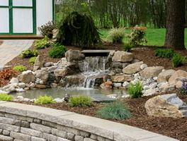 pond-constuction-pond-contractor-pond-care