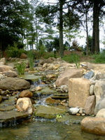pond-waterfall-koehler-2