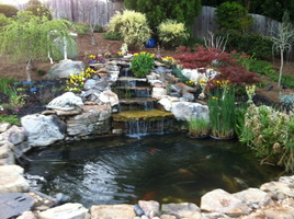 Small-Koi-pond-and-watefall1-e1382060683710