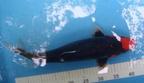 http://www.forum-bassin.com/photos/i.php?/upload/2013/04/30/20130430112716-d7d1aaf5-th.jpg