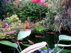 http://www.forum-bassin.com/photos/i.php?/upload/2015/10/27/20151027225908-e7e5270f-th.jpg