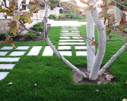 12 geometric-garden-path-ideas-stepping-stones-lawn