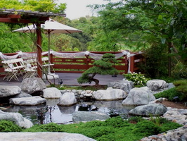 13 Backyard-Japanese-Garden-Ideas-With-Fish-Pool