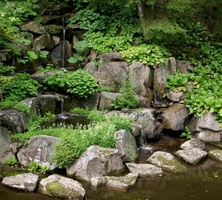 japanese-pond-waterfall