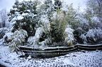 https://www.forum-bassin.com/photos/i.php?/upload/2017/12/20/20171220104210-f7057117-th.jpg