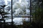 https://www.forum-bassin.com/photos/i.php?/upload/2017/12/20/20171220105010-e25027da-th.jpg