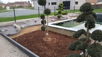 https://www.forum-bassin.com/photos/i.php?/upload/2020/02/02/20200202194852-73ffe7c2-th.jpg